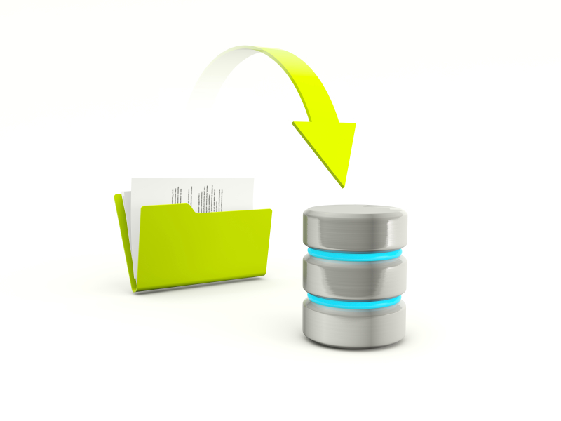 Keep your website safe with our daily backup service